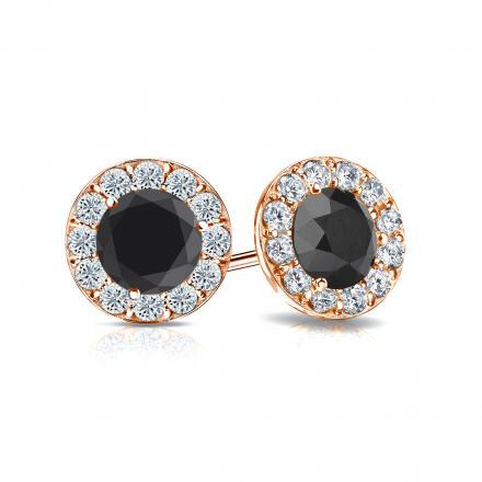 Certified 14k Rose Gold Halo Round Black Diamond Stud Earrings 1.50 ct. tw.