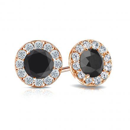 Certified 14k Rose Gold Halo Round Black Diamond Stud Earrings 2.00 ct. tw.