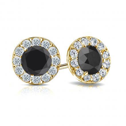 71dbf8ff3 Certified 18k Yellow Gold Halo Round Black Diamond Stud Earrings 2.50 ct.  tw. - DiamondStuds.com
