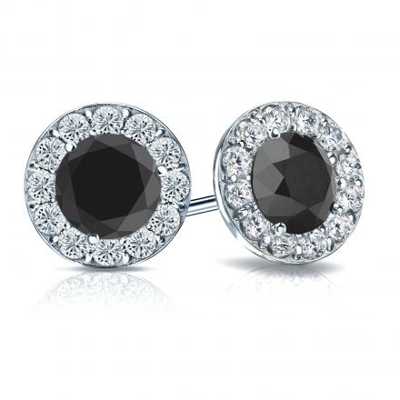 Certified 14k White Gold Halo Round Black Diamond Stud Earrings 3.00 ct. tw.
