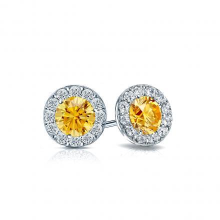 a16f072dc Certified 14k White Gold Halo Round Yellow Diamond Stud Earrings 1.00 ct.  tw. (Yellow, SI1-SI2) - DiamondStuds.com